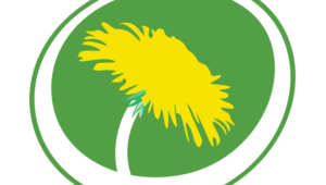Miljöpartiets dag i Almedalen 8/7 - 18
