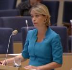 Ni måste se:  Annika Strandhäll i interpellationsdebatt mot  Fredrik Schulte